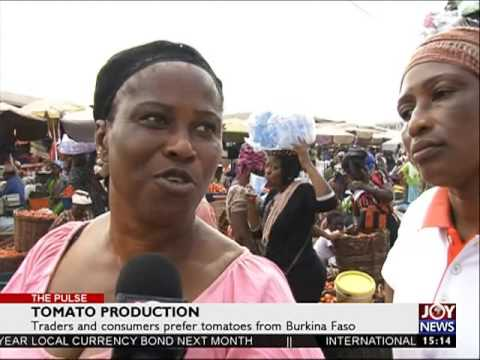 Tomato Production - The Pulse on Joy News (8-9-16)