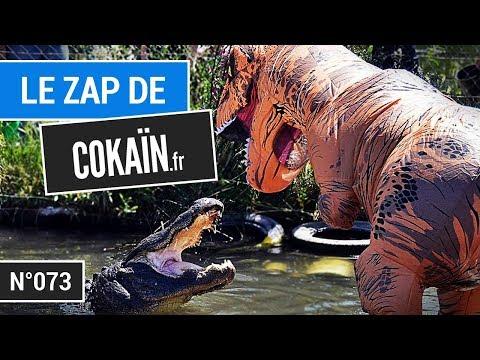Le Zap de Cokaïn.fr n°073