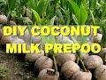 DIY COCONUT MILK PRE POO FOR SHINNY HAIR ✔️Jah-nette
