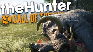 The Hunter Call Of The Wild | KNOCKOUT & NEW ANIMAL CLUE!! (Multiplayer)