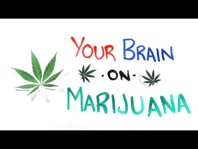 Your Brain on Drugs: Marijuana