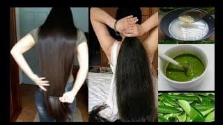 15 நாட்களில் முடி அடர்த்தியாக வேகமாக வளர | Hair Growth Tips in தமிழ் | Glow Natural Tamil