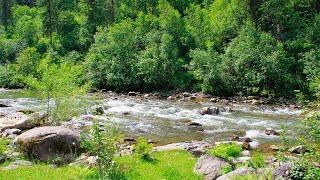 Шум Воды - Звуки Реки для Сна и Отдыха, Relax 2 часа Звуки Природы