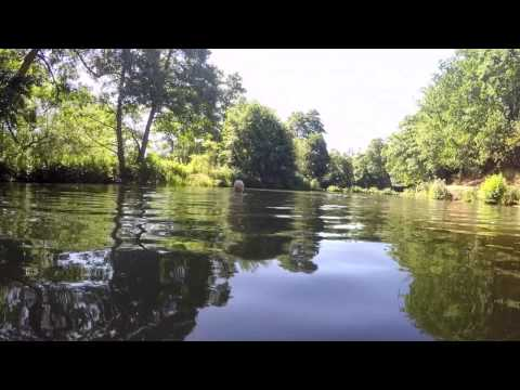 Wild Swim Guide - River Wey