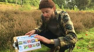 Wild Challenge | Finding Fabulous Fungi