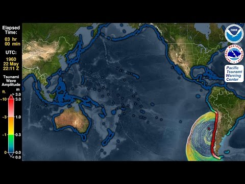 Tsunami Forecast Model Animation: Chile 1960