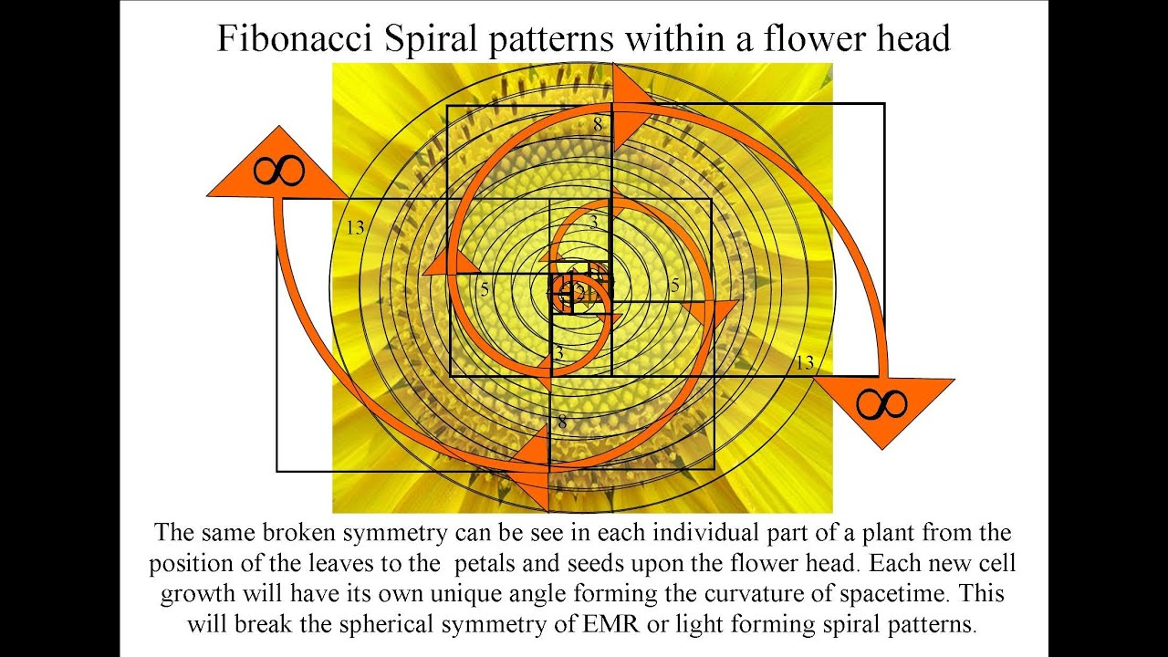 Golden ratio and fibonacci spiral in a new atomic theory youtube gamestrikefo Image collections
