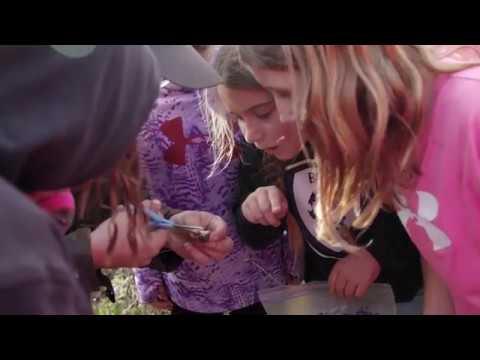 Arbor Park Intermediate School: Outdoor Education