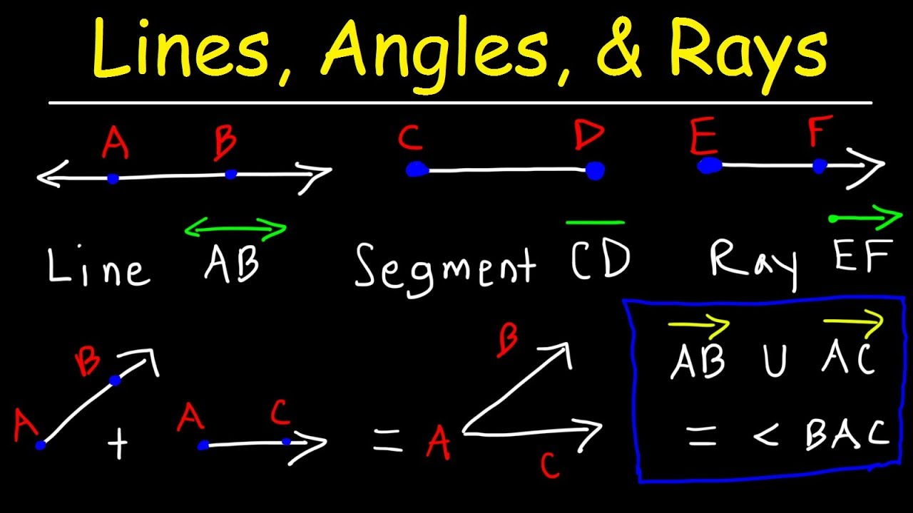 Drawing Lines Segments And Rays : Lines rays line segments points angles union