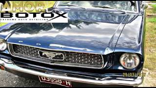 1966 Mustang paint restoration / AMOR Botox extreme detailing