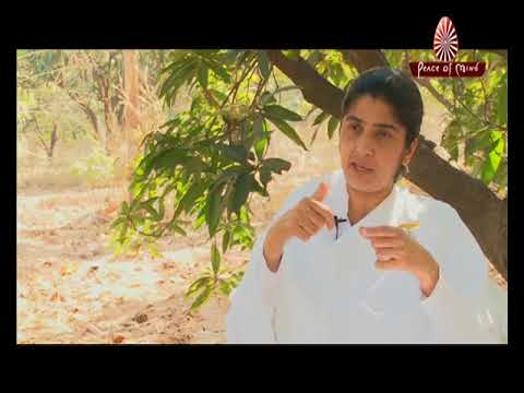 Soul Reflections- Ep.24| BK SHIVANI | Awakening with Brahma Kumaris