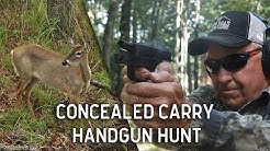 Springfield XDS Concealed Carry Deer Hunt