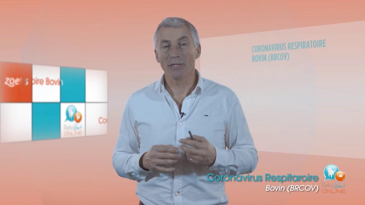 FILMCORPORATE.fr - Les atouts de la vidéo E-learning pour les entreprises 70862