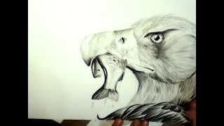 Рисунок орла карандашом (уровень - любитель)(Музыкальное сопровождение: Outsider - Drums_Trip Pokki_DJ - Made In Italy Группа ВК: http://vk.com/siberian_art., 2015-04-14T16:19:00.000Z)