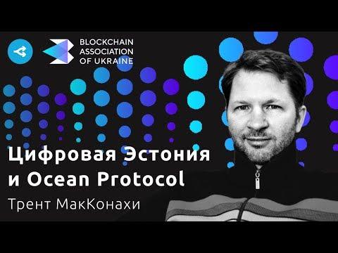 Эволюция технологий в Эстонии и Ocean Protocol как инструмент цифровизации — Трент МакКонахи
