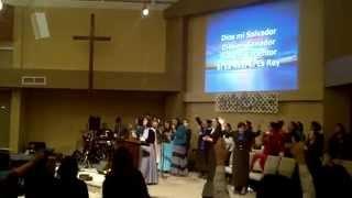 Toda Mi Alabanza (Every Praise - Spanish)