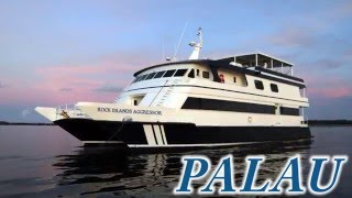 Dive Palau with the Aggressor Fleet!