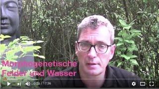 Wissenschaft begegnet Spiritualität - morphogenetische Felder und  die Bedeutung von Wasser