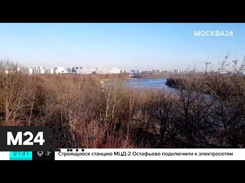 """Метеорологи предсказали """"розовый"""" февраль - Москва 24"""