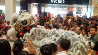 Video CNY2017 Acrobatic Lion Dance by Kun Seng Keng關聖宮龍獅團// Bangsar Village 5/2/2017 download MP3, 3GP, MP4, WEBM, AVI, FLV Mei 2018