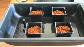 how to setup homemade ebb & flow tray