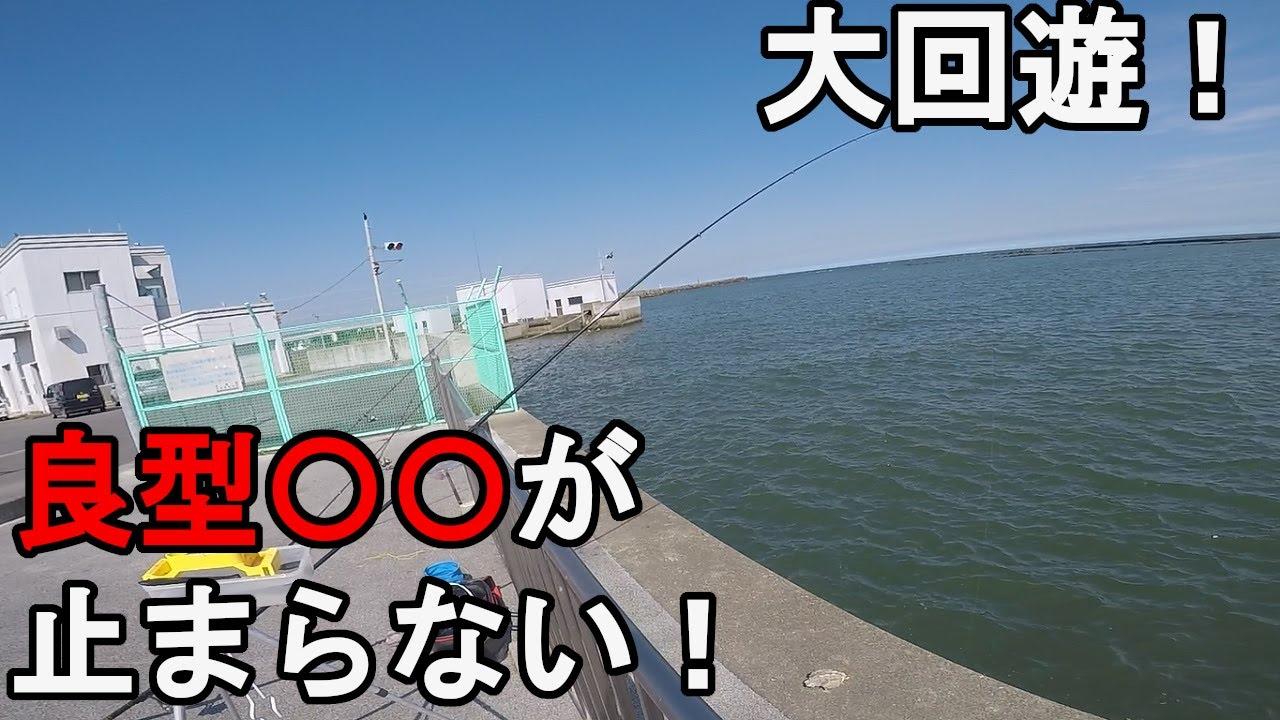 【太平洋】7月下旬サビキ釣り調査釣行!梅雨明け後の夏の時期に、視聴者さんから情報提供があった茨城県中部の常夜灯のある釣り場で釣りしていたら…!【2021.07.20】