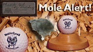 Mole Alert - The Molehill As Display For A Golf Ball