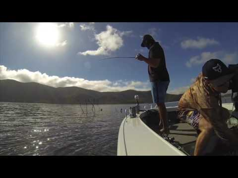 MAFSA 2016 World Sooty Grunter Fishing Championships At Eungella Dam