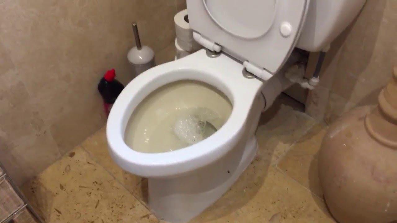 Trent bathroom suites - My Close Coupled Trent Astura Syphonic Toilet