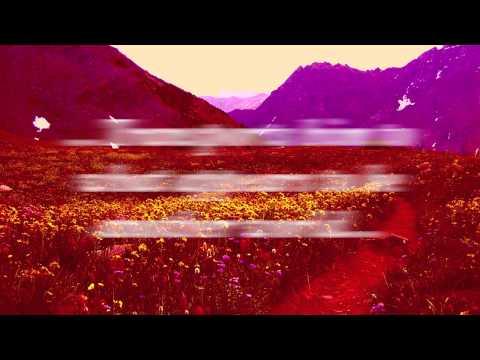 Book Trailer - The Transall Saga