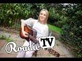 Ciara Fox  Fields Of Gold cover  Roadie Tv