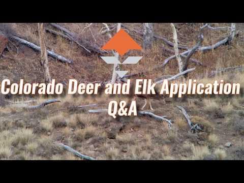 Colorado Deer and Elk Application Strategy — Q&A