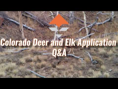 Colorado Deer And Elk Application Strategy — Q&A