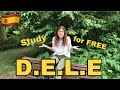 - Free resources to pass the DELE ┇ How to pass the DELE // Just A Teenager