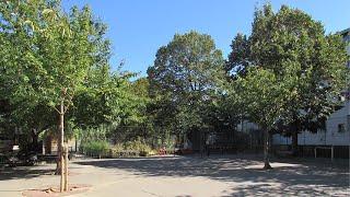 École élémentaire Quatre Fils : projet d'aménagement de la cour Oasis