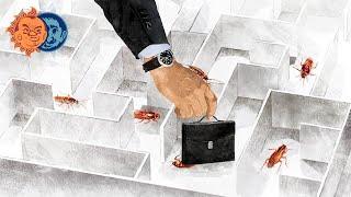 Плющев и Наки: правительство, Долгополов, Иссахаар, Путин