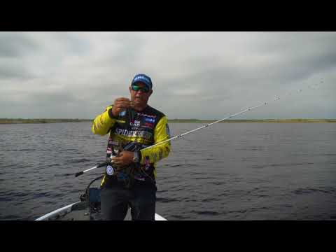 BEST Tips On How To Fish A Lipless Crankbait