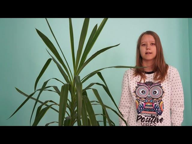 Изображение предпросмотра прочтения – АннаВолкова читает произведение «Ты письмо моё, милый, не комкай...» А.А.Ахматовой
