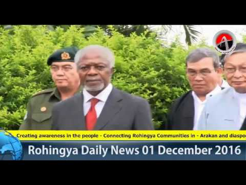 Rohingya Daily News 01 December 2016