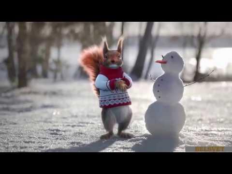 🎅 Шуточное поздравление со старым Новым годом 😜 - Видео с YouTube на компьютер, мобильный, android, ios