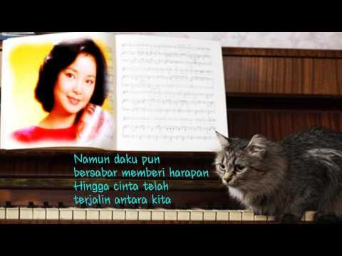 Aaa…Kau Tau印尼版 [ 後悔愛上你 ]Teresa Teng / 鄧麗君