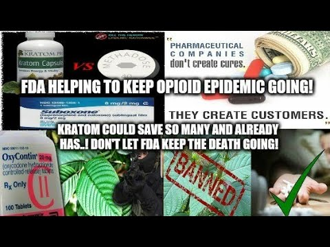 FDA & Big Pharma Trying To Keep Opioid Epidemic Going! Kratom Could Stop It! They Want It Banned!