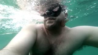 Medusa en Mallorca
