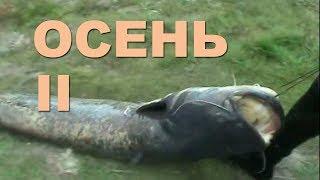 Подводная охота осенью 2011 года. Вторая часть ретро-фильма.