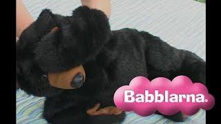 Björnen sover - Sjung med Sanna