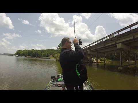 Advanced Angler On The Water Episode 2 with Dan O'Sullivan