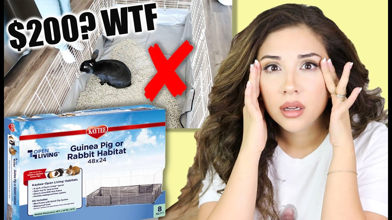 REACTING TO KAYTEE'S RABBIT OPEN LIVING HABITAT (It's bizarre) - download from YouTube for free