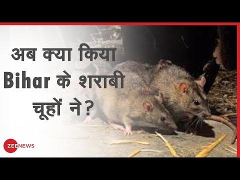 Bihar के 'शराबी'