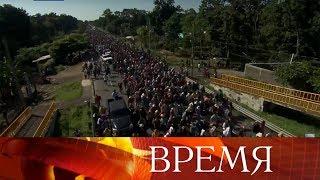 На США движется огромный поток мигрантов из стран Латинской Америки.