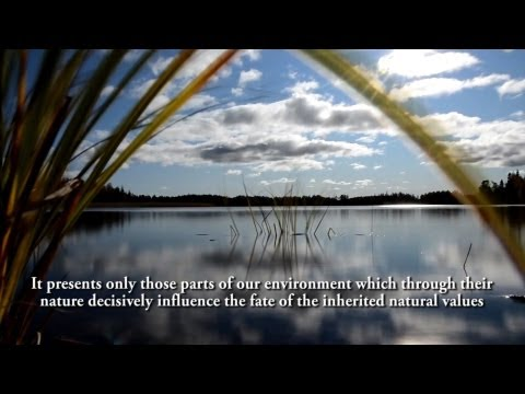Nature and energy - The forest and water, as renewable energy (english subtitle)